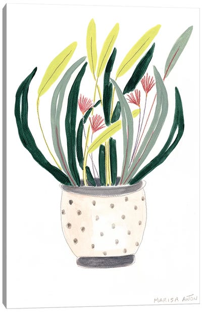 Plants VI Canvas Art Print