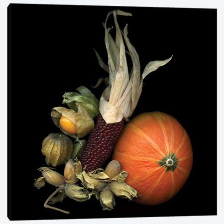 Autumn Charms 3-Piece Canvas #MAG17} by Magda Indigo Canvas Art