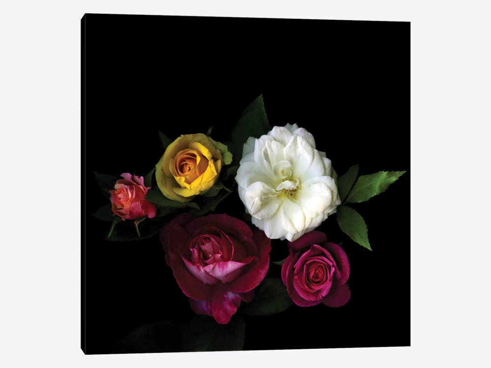 A Rose Festival 1-piece Canvas Wall Art
