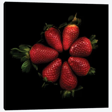 Shiny Strawberries Canvas Print #MAG66} by Magda Indigo Canvas Print