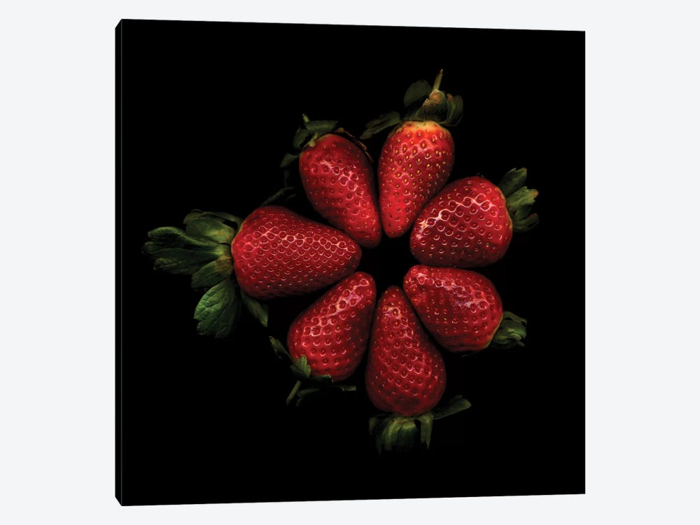 Shiny Strawberries by Magda Indigo 1-piece Canvas Artwork