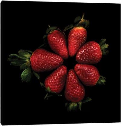 Shiny Strawberries Canvas Art Print