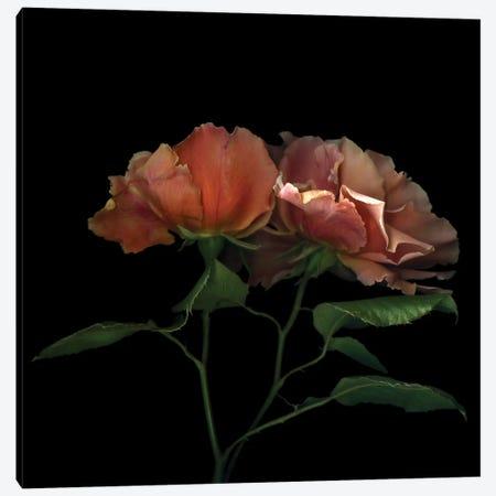 True Love 3-Piece Canvas #MAG90} by Magda Indigo Canvas Art Print