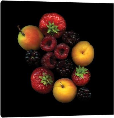Tutti Frutti Canvas Art Print