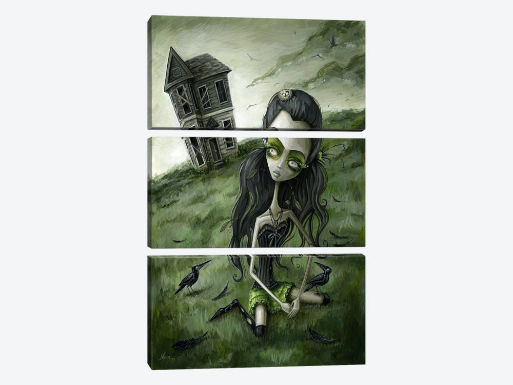 Abandoned In The Field Of Crows by Megan Majewski 3-piece Canvas Wall Art