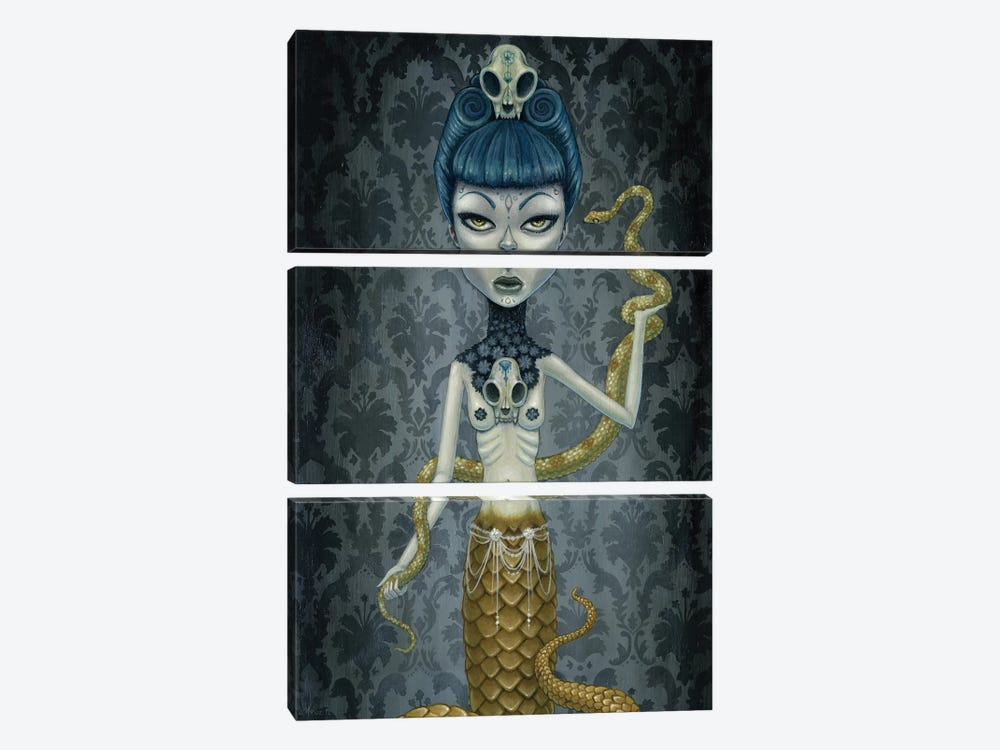 Selina by Megan Majewski 3-piece Canvas Art Print