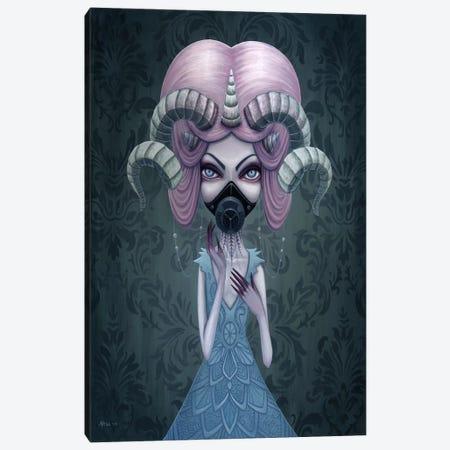 Aurora Canvas Print #MAJ8} by Megan Majewski Art Print