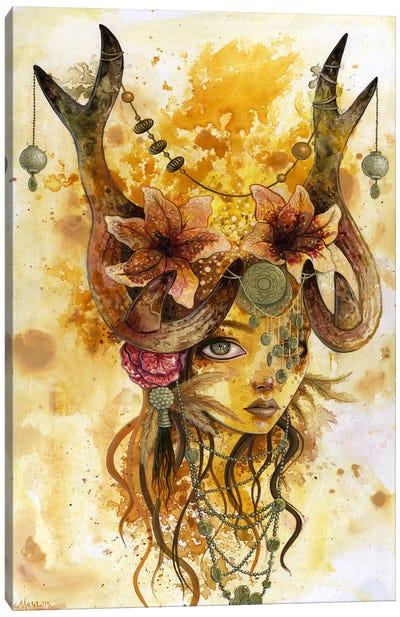 Autumn's Sun Canvas Art Print