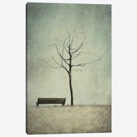 The Cherry Tree - Winter Canvas Print #MAL10} by Majali Canvas Artwork