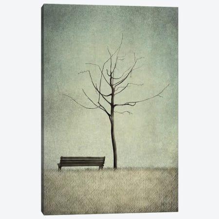 The Cherry Tree - Winter Canvas Print #MAL10} by Majali Canvas Artwork