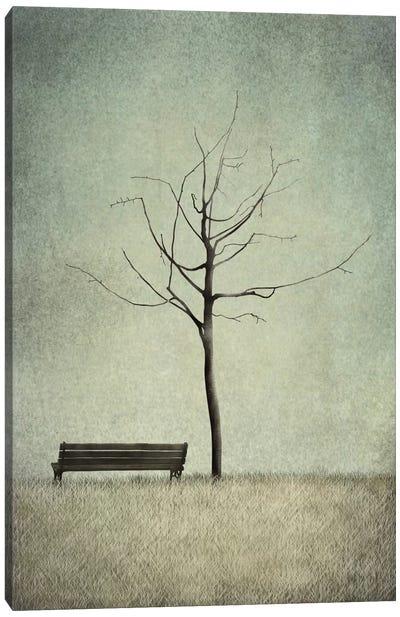 The Cherry Tree - Winter Canvas Art Print