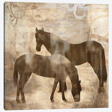 Equine I Canvas Print #MAN1} by Jason Mann Canvas Print