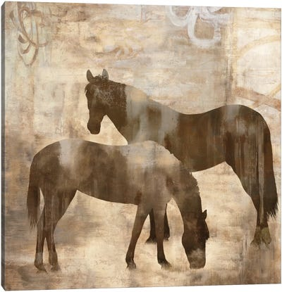 Equine I Canvas Art Print