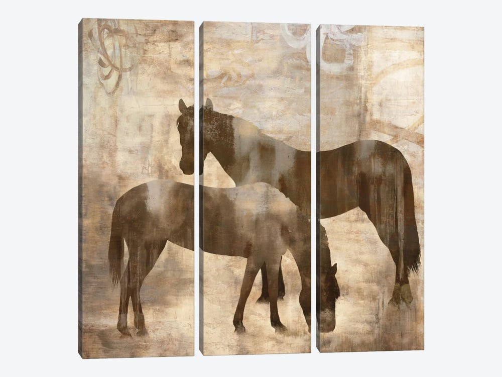 Equine I by Jason Mann 3-piece Canvas Artwork