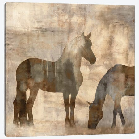 Equine II Canvas Print #MAN2} by Jason Mann Canvas Art Print