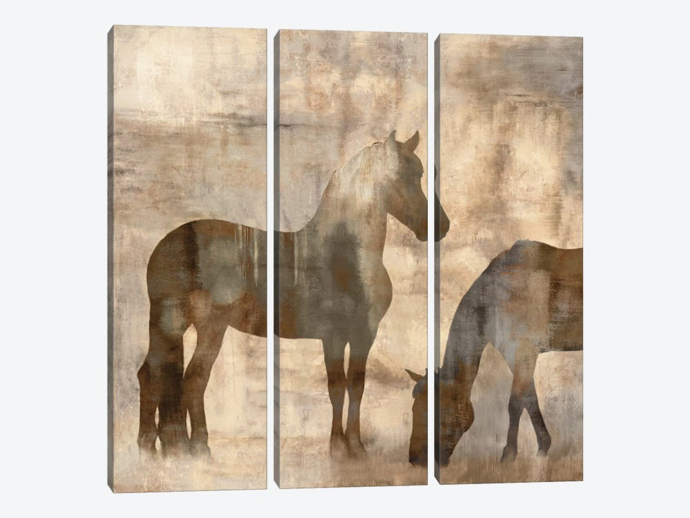 Equine II by Jason Mann 3-piece Canvas Art Print