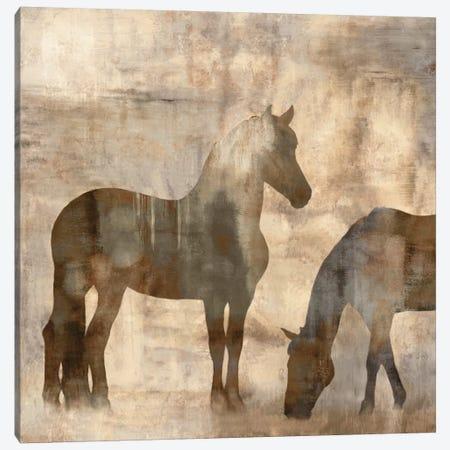 Equine II Canvas Print #MAN2} by Jason Mann Canvas Art Print