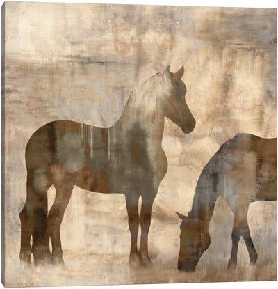 Equine II Canvas Art Print