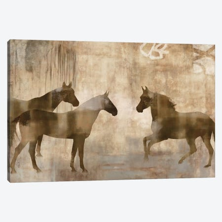 Horse Sense Canvas Print #MAN3} by Jason Mann Canvas Art Print