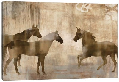 Horse Sense Canvas Art Print