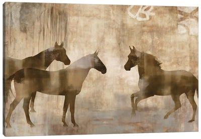 Horse Sense Canvas Art Print
