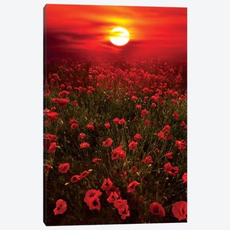 Warm Sunset Canvas Print #MAO124} by Marco Carmassi Art Print