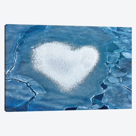 Heart Of Ice Canvas Print #MAO151} by Marco Carmassi Art Print