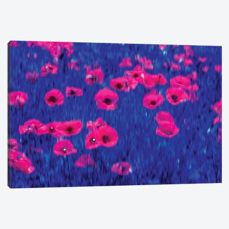 Poppies Impressions Canvas Print #MAO173} by Marco Carmassi Canvas Art Print