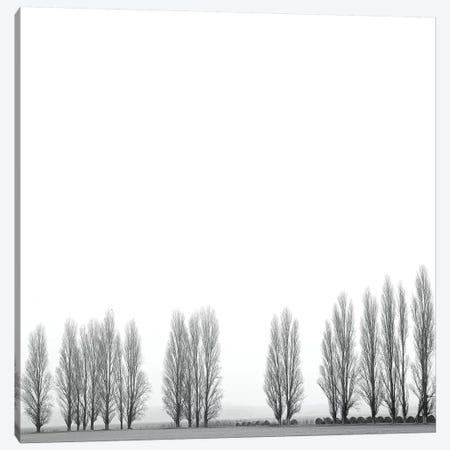 Wrapped In Silence Canvas Print #MAO203} by Marco Carmassi Art Print