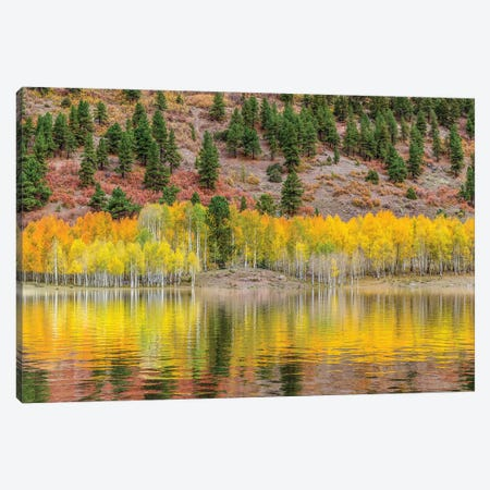 American Autumn Colors Canvas Print #MAO205} by Marco Carmassi Canvas Artwork