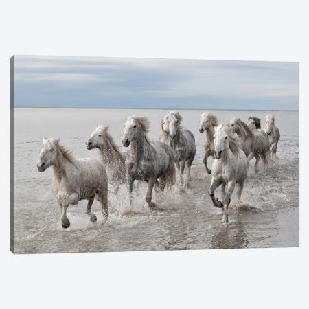 Run On The Water Canvas Print #MAO213} by Marco Carmassi Canvas Artwork