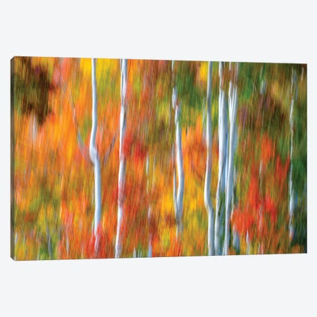Telluride Watercolor Canvas Print #MAO215} by Marco Carmassi Art Print