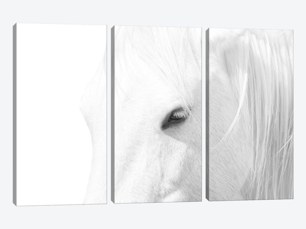 White Horse by Marco Carmassi 3-piece Canvas Art Print