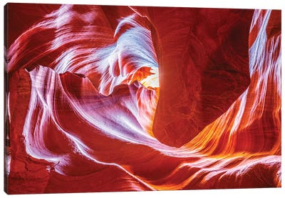 Antelope Wave Canvas Art Print