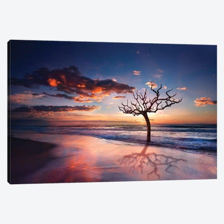 Tree In The Sea Canvas Print #MAO22} by Marco Carmassi Canvas Wall Art