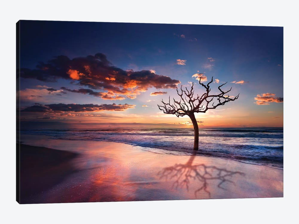 Tree In The Sea by Marco Carmassi 1-piece Canvas Art Print