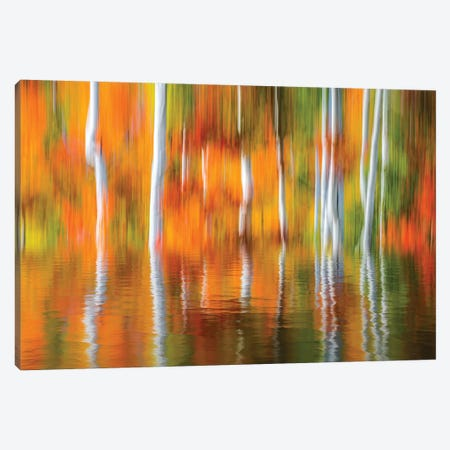 Orange Reflection Canvas Print #MAO230} by Marco Carmassi Canvas Artwork