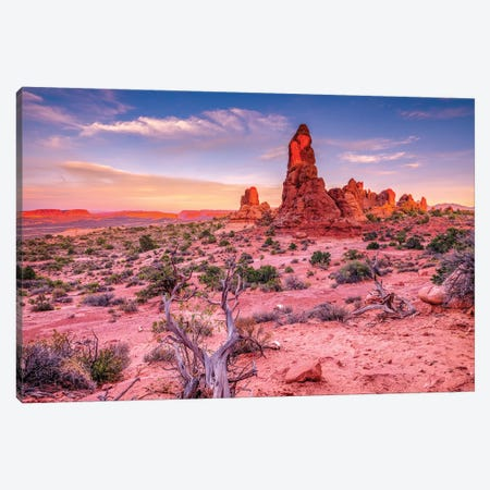 Red Stones Canvas Print #MAO231} by Marco Carmassi Canvas Artwork
