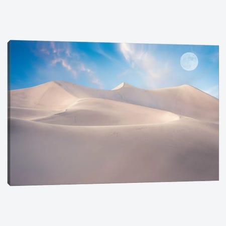 White Desert Canvas Print #MAO237} by Marco Carmassi Canvas Art Print