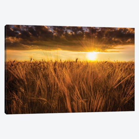 Early In The Morning Canvas Print #MAO26} by Marco Carmassi Art Print