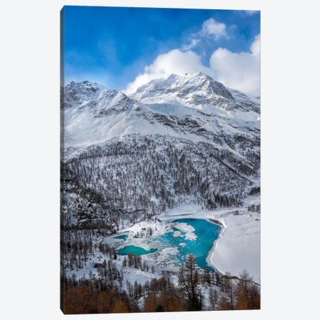 Frozen Heart Canvas Print #MAO40} by Marco Carmassi Canvas Art