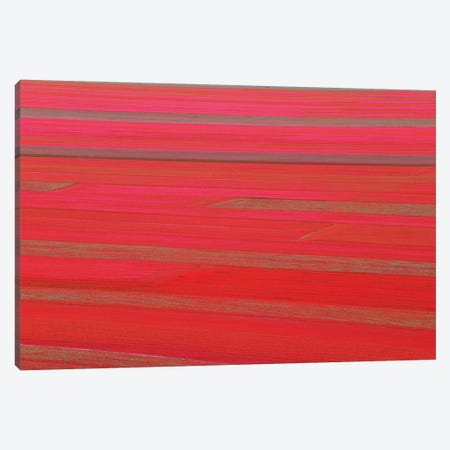 Red Land Canvas Print #MAO77} by Marco Carmassi Canvas Art