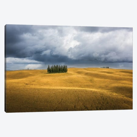 Wheat And Cypresses In Tuscany 3-Piece Canvas #MAO80} by Marco Carmassi Canvas Art