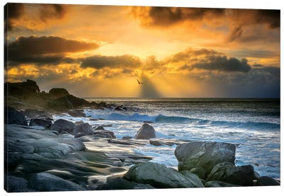 Lofoten Beach And Stones Canvas Art Print