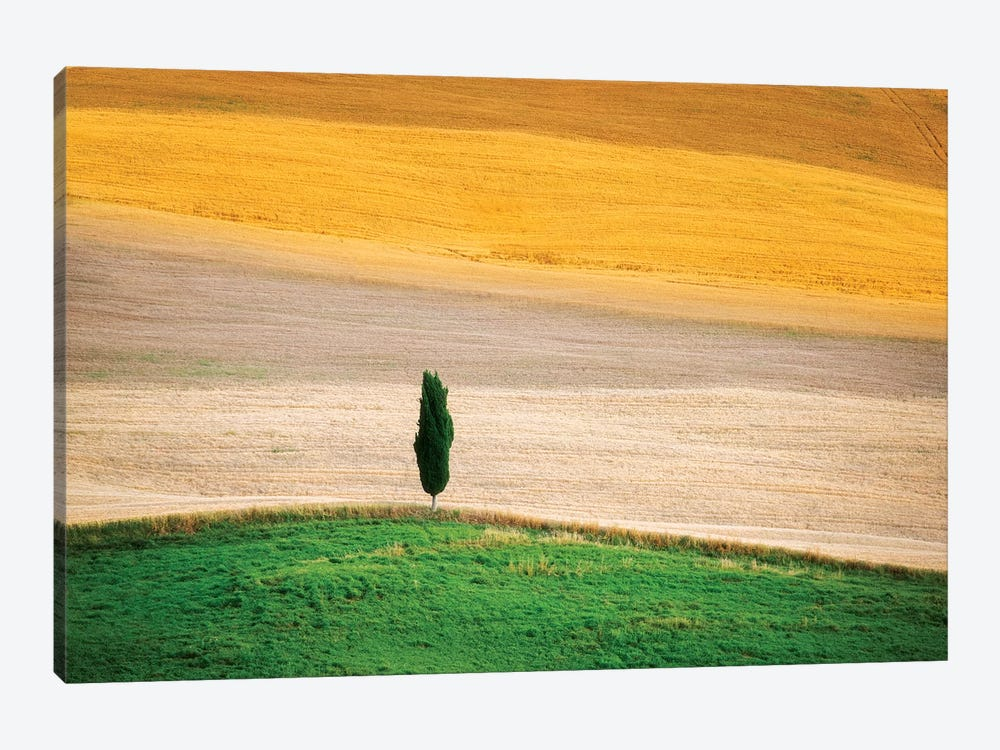 Tuscany Land by Marco Carmassi 1-piece Art Print