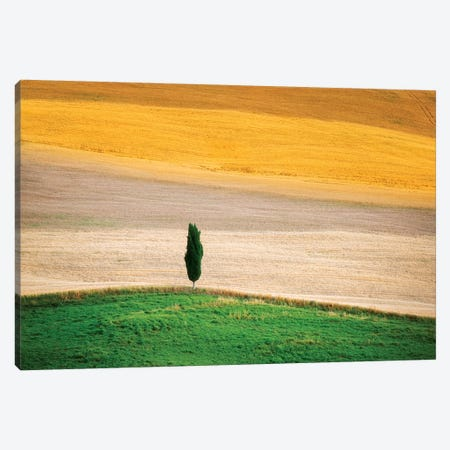 Tuscany Land Canvas Print #MAO97} by Marco Carmassi Canvas Wall Art