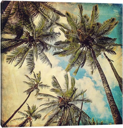 Kauai Island Palms Canvas Art Print