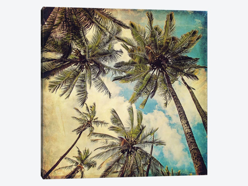 Kauai Island Palms by Melanie Alexandra Price 1-piece Art Print