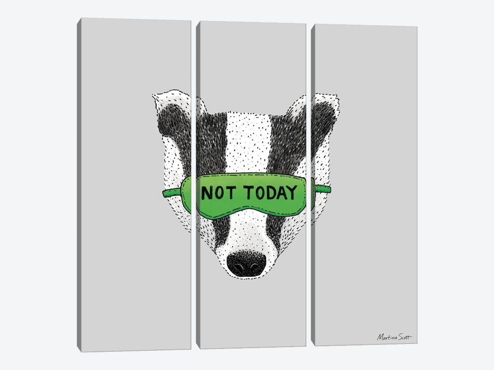 Not Today Badger by Martina Scott 3-piece Canvas Artwork
