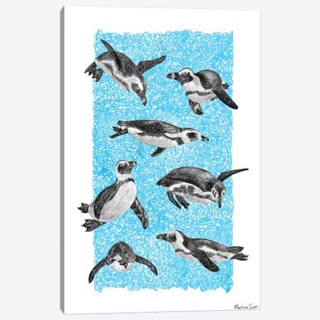 African Penguins Canvas Print #MAS5} by Martina Scott Canvas Wall Art